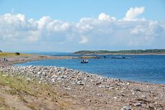 Sletter 2011 (Linepusle) Tags: summer norway larkollen sletter