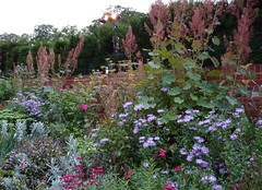 Summer border, Caversham Court Gardens (karenblakeman) Tags: uk garden july caversham 2011 herbaceousborder cavershamcourtgardens