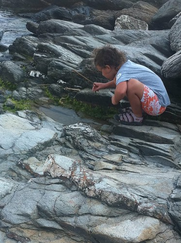 Searching the tide pools