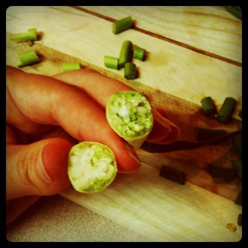 Inside garlic scape