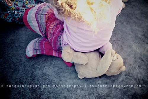 Kid sitting on teddy by twoguineapigs pet photography