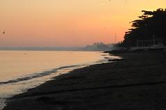 Bali, Lovina Beach - morgens am Strand (10) (Chironius) Tags: bali indonesien indonesia gegenlicht morgendmmerung morgengrauen  morgen morning dawn matin aube mattina alba ochtend dageraad  amanecer sonnenaufgang sunrise zonsopgang  morgens dmmerung indischerozean indik indianocean silhouette