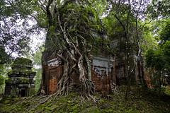 Prasat Pram (Keith Kelly) Tags: stone religious temple ancient asia cambodia southeastasia capital ruin kingdom holy sacred kh siemreap angkor laterite kampuchea kohker khmerempire jayavarmaniv prasatpram brahmanic 928944ad