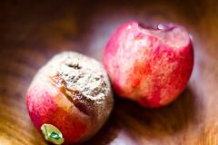 (Antoine Monegier du Sorbier) Tags: fruit pourri moisissure pêche moisi corbeille