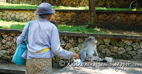 Indonesia_2011-10.jpg