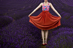 Girl in Lavender Field. (zest of the loganberry) Tags: flowers summer anna london floral girl field fashion portraits vintage photography purple kim lavender nat skirt portraiture americanapparel swimsuit hitchin twiglet guybourdin sarahwright missaniela modelmayhem lavenderfield sarahschloo zestoftheloganberry hannahcoates karaerwin