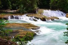 DSC_3480 (Nexus VII) Tags: travel maya messico aquaazul