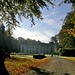 Parc d'Enghien en automne