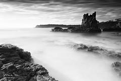 Cathedral Rocks (SoniaMphotography) Tags: bw seascape art monochrome canon downs blackwhite rocks smooth australia formation nsw 7d volcanic kiama jonesbeach cathedralrocks