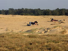 Boys will be boys (Wilma1962*) Tags: photographer naturereserve veluwe hogeveluwe fotograaf zandverstuiving dutchdesert sandyplain depollen mygearandme flickrfotowalk2102011