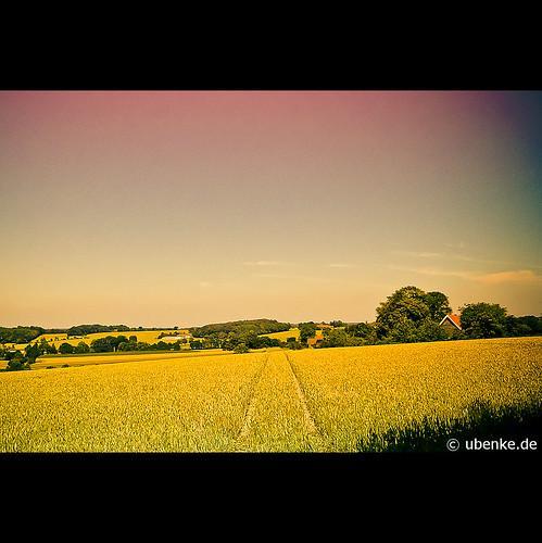 _summerheat