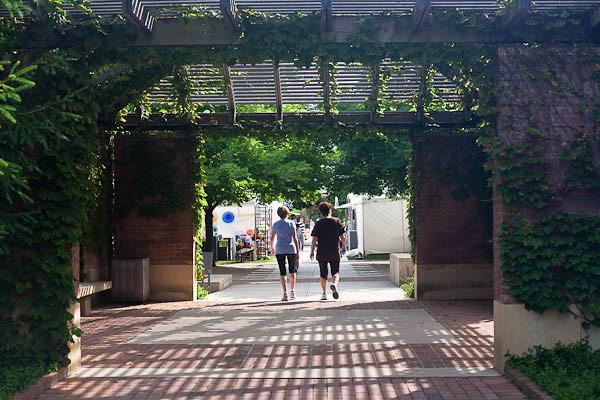 Chicago Botanic Gardens Art Festival