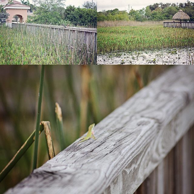 boardwalk triptych