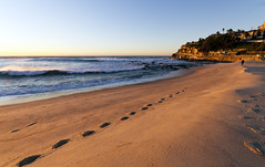 Bronte (Sam Lodge) Tags: ocean morning light sea colour beach water sunrise canon landscape sand waves sydney footprints sigma australia 7d 1020mm