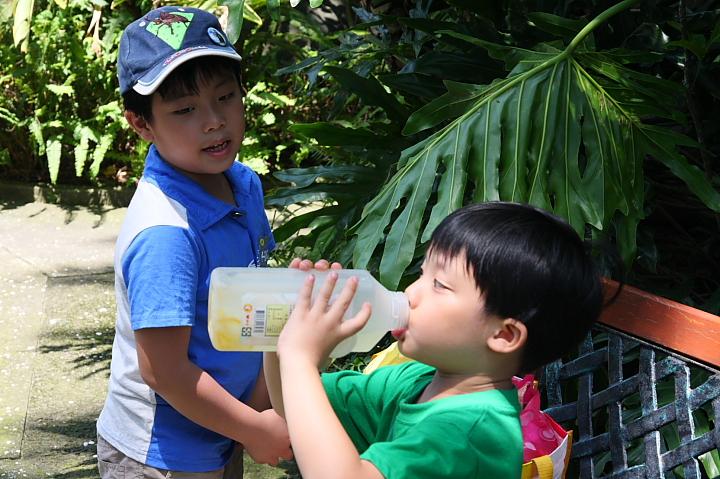 六福村主題遊樂園(南太平洋區)024