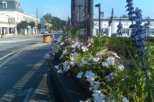 Main St: flowers on the RR bridge