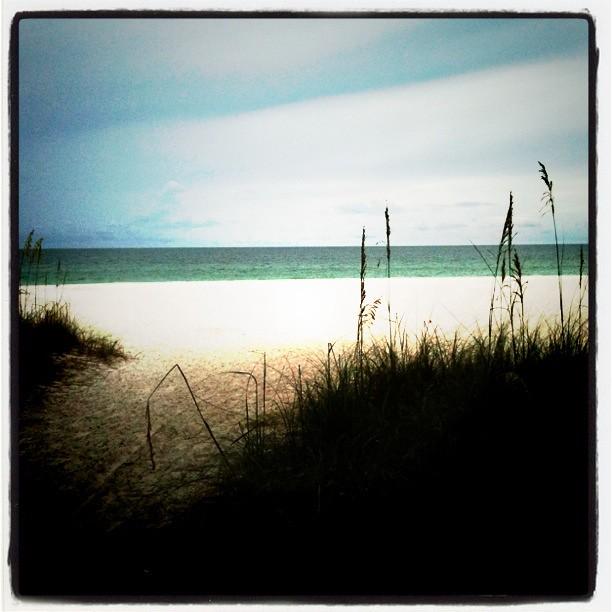 Beach Shore 3