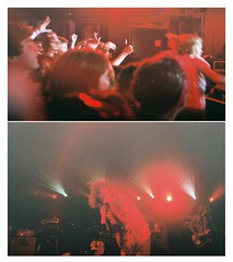 Cage the Elephant (allfangs andelbows) Tags: film lomolca may28 cagetheelephant