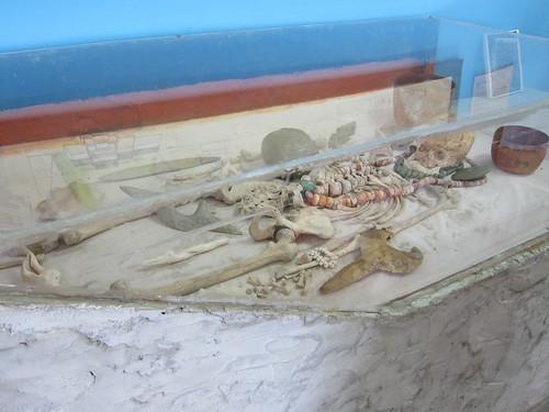 Mayan tomb display