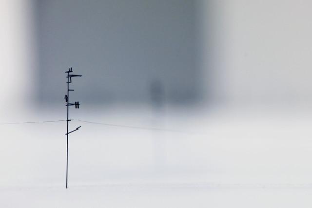 Takahiro Iwasaki; Out of Disorder, Pencil Lead; Image WeAreTape