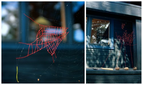 Mended-Spiderweb-collage