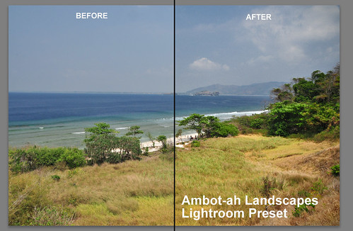 Landscape Photography Lightroom Preset; My One Click Fix