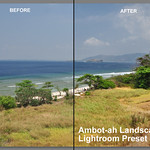 "Landscape Photography Lightroom Preset; My ""One Click Fix"""