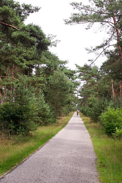 Netherlands 2011 overview 17 Hoge Veluwe 1