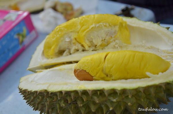 durian part 2 (4)
