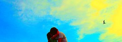 Love. Love. Love. (Noe Rules Cervio) Tags: original sun clouds canon photography eos nikon kiss couple artistic seagull gull rules casio fotos nikkor no vigo porrio noe canonpowershot cervio subrrealist noerules noerulescervio norules