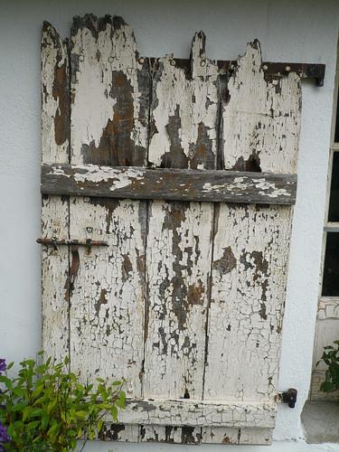 Old door shutter