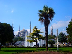 Blue Mosque, Istanbul, Turkey (Ferry Vermeer) Tags: travel fountain architecture wow turkey garden islam trkiye mosque turquie trkei palmtree ottoman bluemosque six istambul turkije minarets sultanahmet ottomanarchitecture  estambul turqua turchia  sultanahmed sultanahmetcamii travelphotography  stambul isztambul istanboel turecko   urbangreen  istamboul sultanahmedmosque stambula istanbu   istanbulili stamboul stamboll sixminarets estambol stambulas stambu  stenbol trkiy istanbulprovince  carigrad islamarchitecture    tsarigrad  mikligarur  istanbl ferryvermeer ipoli  iseutanbul istanbul isutambru konstantinpolis sztambul thnhk