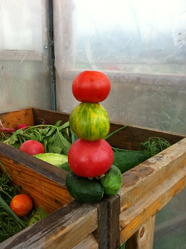 stack of tomatoes and cukes by sunnysidedru