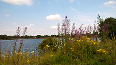 Eye Green Nature Reserve 2.jpg (uplandswolf) Tags: eye lakes ponds peterborough cambridgeshire naturereserves eyegreen