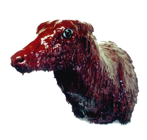 Sore, 2003, Angela Singer--a cow head covered in a red, bloodlike substance