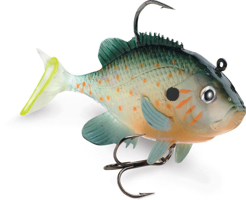 WildEye Live Sunfish