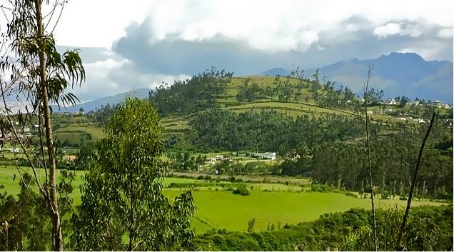 yana-pamba-cotacachi