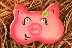 Mallory the Pig