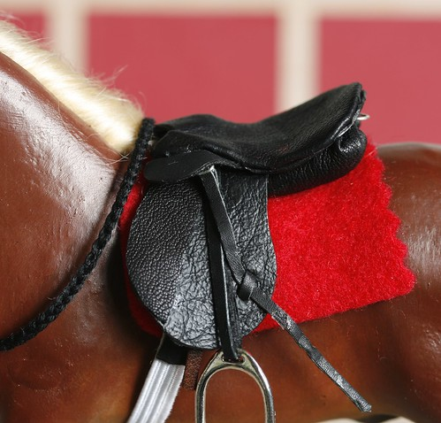 Simba's Saddle