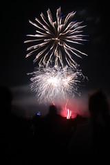 fireworks 2010 113 (TaylorAW5) Tags: fireworks2010