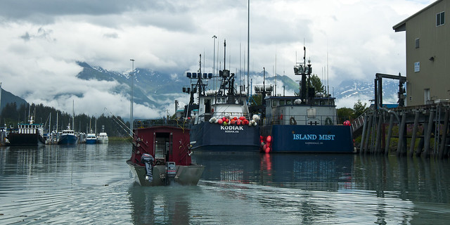 Kodiak and Island Mist in Valdez Harbor