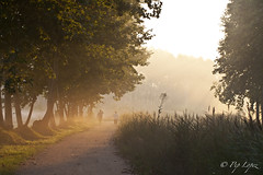Estanys de Sils - albada-1 (Pep Lopez) Tags: naturaleza nature sunrise natura frog amanecer niebla sils boira albada estanys