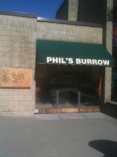 La madriguera de Phil