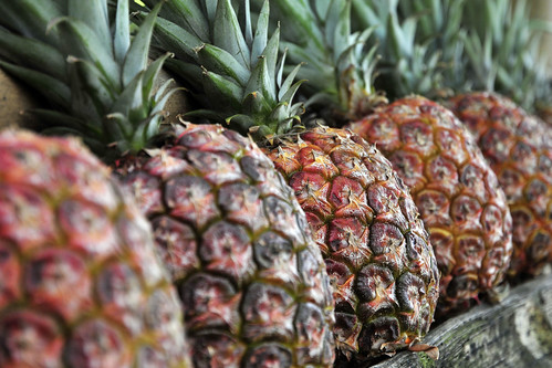 NP pineapple by CIAT International Center for Tropical Agriculture, on Flickr