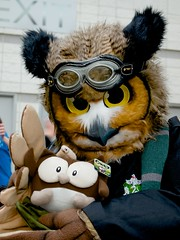 Bubo and Owly!