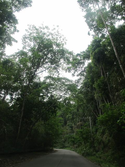 Anvaya Cove (70)