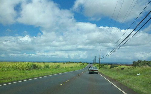 hawaiian countryside