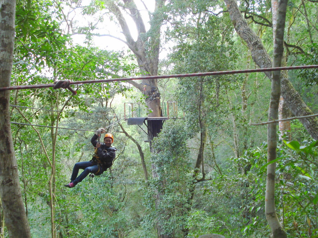 Canopy Tour in the Tsitsikamma Forest