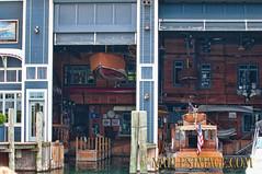 4 WINNS HOUSE (jay2boat) Tags: boat offshore powerboat boatracing boynethunder naplesimage