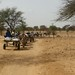 Charretes cruzando o Sahel